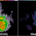 "A comparison of the 2000 UTC 1 min. flash extent density (left) and mean flash area (right) for a supercell over Kingfisher County, Oklahoma on 16 May 2010. This storm produced a wide swath of giant hail (>2"" in diameter), causing severe damage to buildings and vehicles in it path."