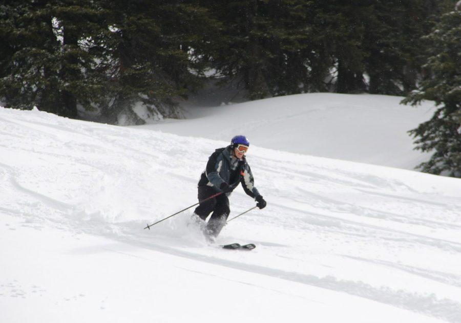 Zrnic skiing